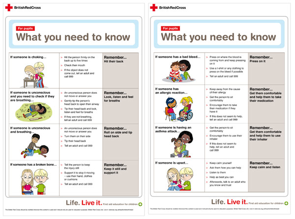 Red cross first aid pdf