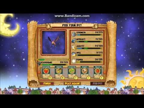 Wizard101 how to get health fast