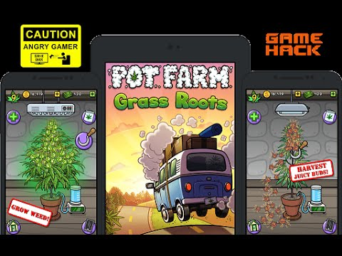 Pot farm grass roots guide