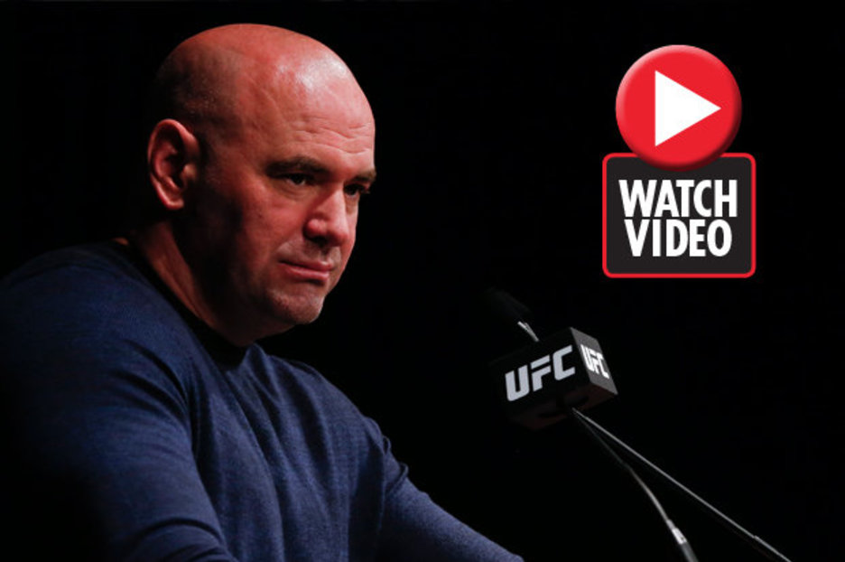 Dana white king of mma pdf